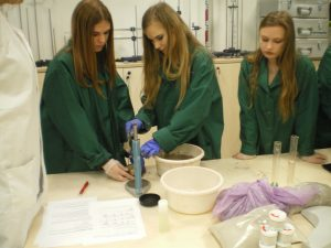 Zajęcia w laboratorium RZPWE